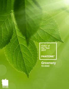 color-of-the-year-2017-greenery-pinterest-og